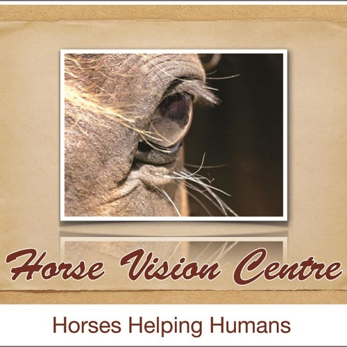 Chris Scott Horse Vision