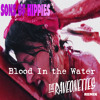 Sons of Hippies - Blood In the Water (The Raveonettes Remix)