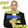 Best Most Famous PITBULL Vocal Samples  **Click BUY for FREE DOWNLOAD**
