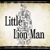 Mumford and Sons -Little Lion Man (Ziggerzen Bootleg)