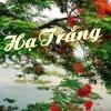 HẠ TRẮNG -Sáng tác: Trịnh Công Sơn  -Trình bày: Lệ Thu