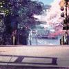 The Park Song [Original Mix]