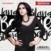 Bebizie   Jangan Bilang Sayang (Roy. B Radio Edit Mix)   Single