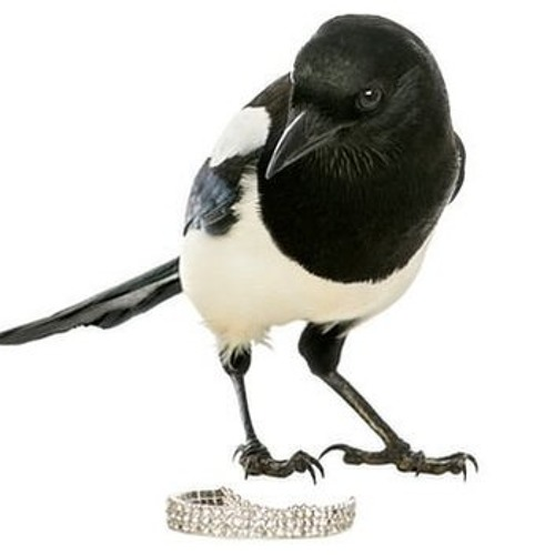Edward Kellys Blues By A Tiding Of Magpies