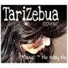 Magic! - No Way No ( tarizebua cover )