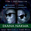 Opaps Madollar x Sleek Whizz - Ekana Nakwa [Clean]