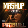 Pitbull - International Mashup