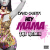 Hey Mama (THB Remix)
