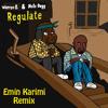 Warren G ft. Nate Dogg - Regulate ( Emin Karimi Remix)