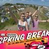 DIA-plattenpussys live @ SPUTNIK SPRING BREAK 2015 mp3