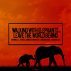 Walking With Elephants vs Leave The World Behind (Giac Edit)- Ten Walls vs SHM, L-Luke, Deborah Cox