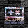 Martin Garrix - Forbidden Voice (Noise Musical Bootleg Edit)