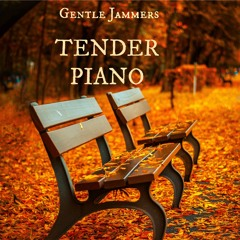 Tender Piano (Royalty Free preview)
