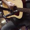 Acoustic Guitar Hummingbird Coryell