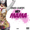 David Guetta & Afrojack Ft Nicky Minaj - Hey Mama (SayDamn Remix)