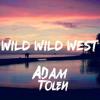 Will Smith - Wild Wild West (Adam Tolén Remix)