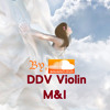 - Flight of the Silverbird - VIOLIN COVER -Very Classical- (Two Steps From Hell)