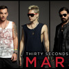 30 Second To Mars- A Beautiful Lie  (cover)