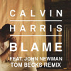 Calvin Harris - Blame (Tom Becks Remix)