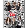 [도프X베스X두부X루찌X네티] EXID - Whoz that girl cover