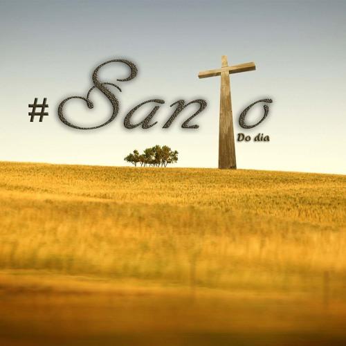 Santo do dia 31 de Maio Visitação de Nossa Senhora