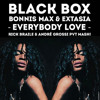 FREE DOWNLOAD Black Box, Bonnis M. & Extasia - Everybody Love (Rick Braile & André Grossi Mash!)