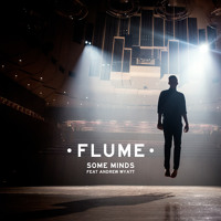 Flume Some Minds (Ft. Miike Snow) Artwork