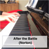 After The Battle - Norton
