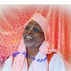 Ufa 20150427 Krishna and His energy Harinma - Уфа, вечер. Шрила Вана Махарадж. Кришна и его энергии, Харинам