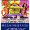 Official Atlanta Carnival 2015 Live Broadcast & Interviews on Reggae Vibes Radio