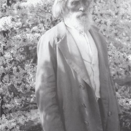Поздрав за новата 1914 г. Към всички, ИБ - София, 6.1.1914г.