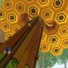 Honeycomb Highway (Desert Ruins Zone 2) [Genesis/YM2612] | Sonic Lost World