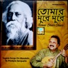 Tagore Songs on Mandolin From The Album Tomar Shurey Shurey