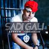 Zeshan - Sadi Gali (Remix)
