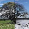 Download FantomenK- Goodbye Summer, Hello Winter (Original) (ProJared theme) Mp3