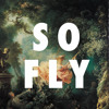 We So Fly(Like Ah Video)-Mr.Darnell