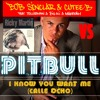 Pitbull Vs Bob Sinclar  - Calle Ocho,Rock This Party,Maria (Personnal Bootleg Version)