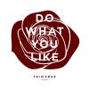 Taio Cruz - Do What You Like [Strass Remix]