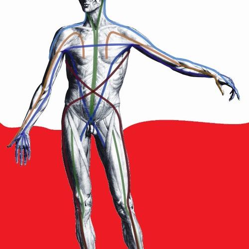 Zapowiedź warsztatów  manualnej pracy wg KMI i Anatomy Trains 2015