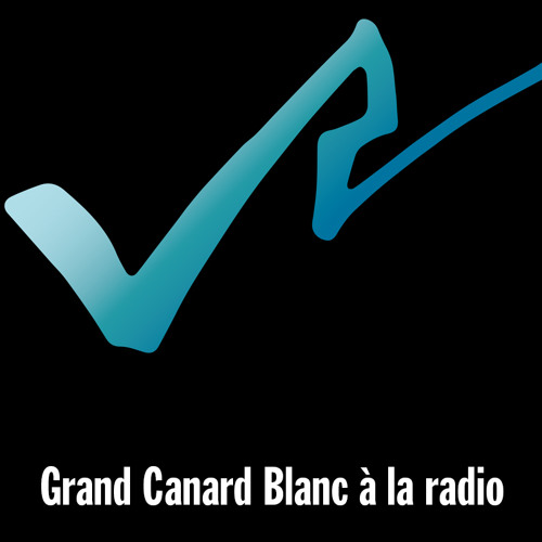 GRAND CANARD BLANC sur Vertical Radio part 1