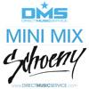 DMS MINI MIX WEEK #170 DJ SCHOENY