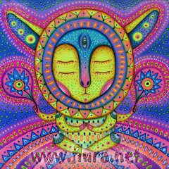 mixes Psychedelic Psybient Psychill Ambient Psydub Cosmic Psychill by Gagarin Project France Europe