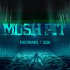 Flosstradamus Feat. Casino - Mosh Pit (Nanomake Remix)