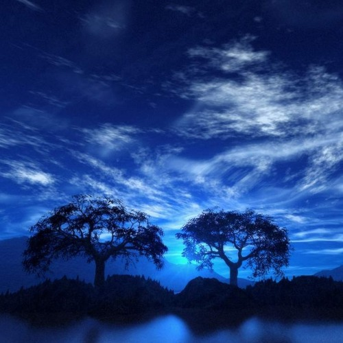 1 Hour Sleep Music Relax- Fall Asleep Meditation Music, Sleep Music, Meditation Music -115