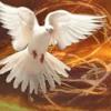 Viduthalin Athmave - Malayalam Christian Holy Spirit Song - YouTube 2.MKV