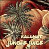 KALUMET   Chillum Nights Vol. 5 - Jungle Juice - Album Presentation    29/05/2015