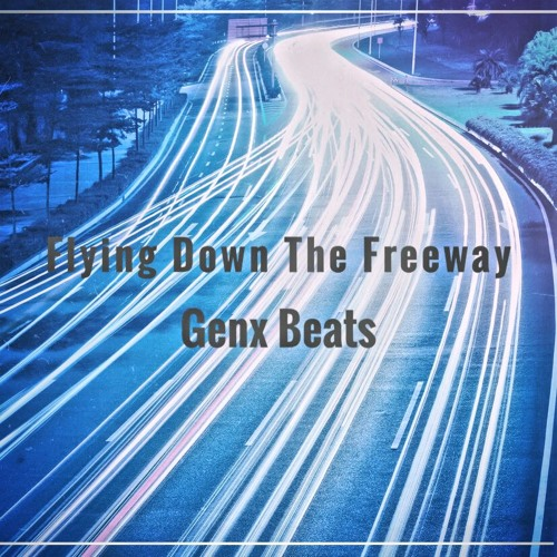 Flying Down The Freeway (Free Version & Lease Version)