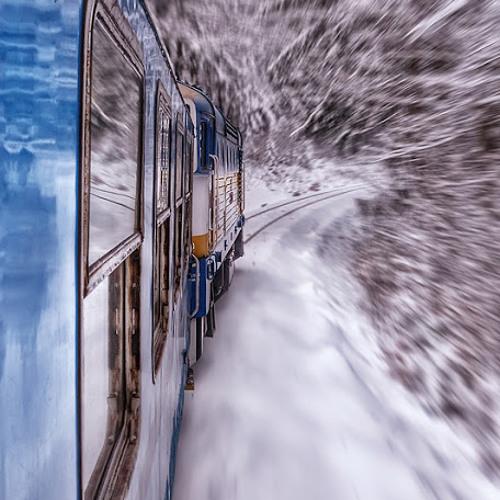 Never Said Goodbye (Fast Train To the Future)