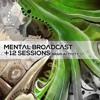 & Twelve Sessions - Brain Activity