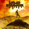 Liquid Stranger - King Of The Hill
